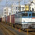 写真: ef65-1089-20090317