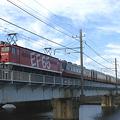 写真: ef65-1118-20080309