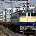 写真: ef65-1106-20080325