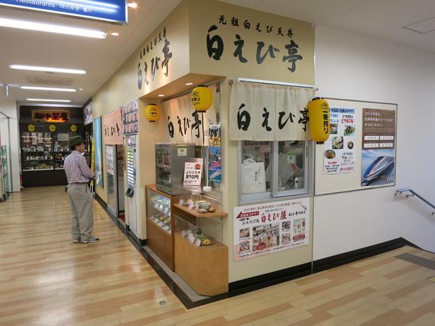 白えび亭(とやま駅特選)電車出張の必食名産!手むき白えび天丼&刺身