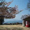 写真: 100_0422