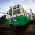 IMGP0521