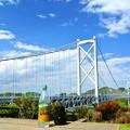 Photos: しまなみ海道
