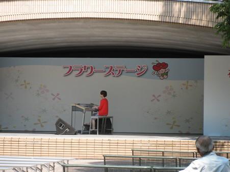 電子オルガンのコンサート