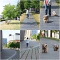 Photos: 2009.5.18