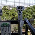 岡崎城(天守閣から見る大樹寺12)