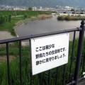 Photos: 治水緑地