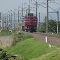Photos: EF81‐136 AT出場試運転 vol.1