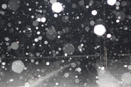 AM0421 お〜。。雪だ〜