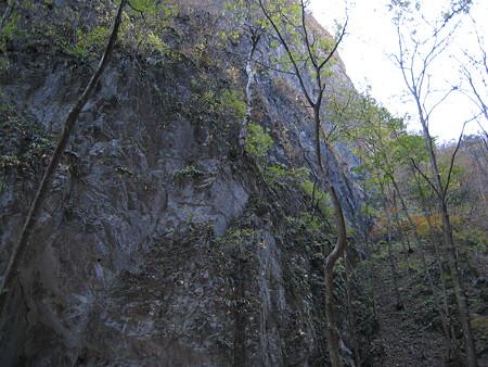 沢沿いの石壁