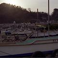 写真: 由比ヶ浜 02